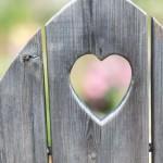 恋愛に特化したメール占いサイトのお得な利用方法は?